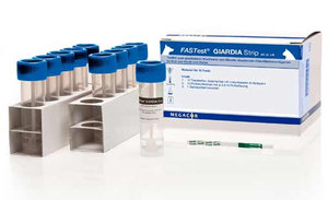 FASTest® GIARDIA Strip Лямблиоз
