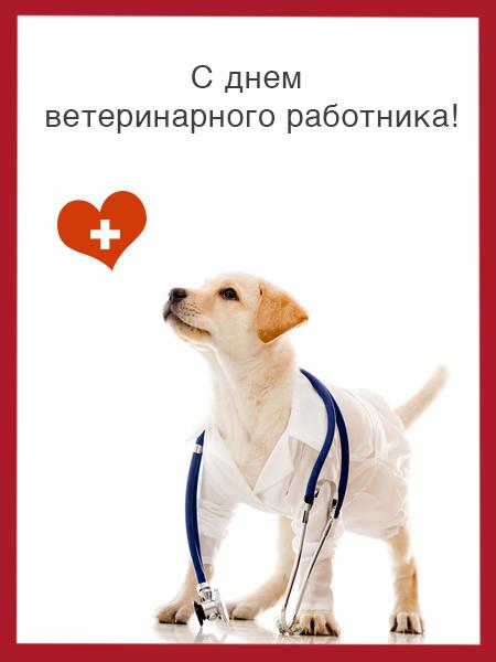 Поздравления на день ветеринара своими словами 55